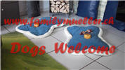 Dogs are Welcome bei www.familymueller.ch...